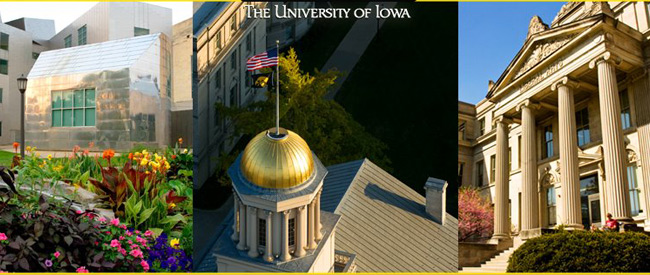 The University of Iowa Research Council